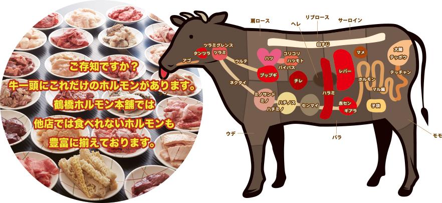 ご存知ですか?牛一頭に沢山のホルモンがあります。鶴橋ホルモン本舗では他店で食べれないホルモンも多数取り揃えております。